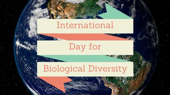 International Day for Biological Diversity